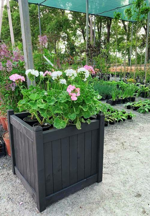 Дерев'яний ВАЗОН для рослин та квітів Софія Д54*Ш54*В57