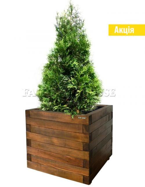 Дерев'яний ящик для рослин та квітів Мілан  Д50*Ш50*В48