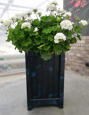 Дерев'яний ВАЗОН кашпо для рослин та квітів Ліон Д40*Ш40*В70