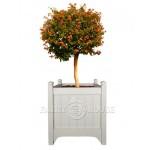 кашпо з дерева для рослин Версаль Д55*Ш55*В60 фото 1