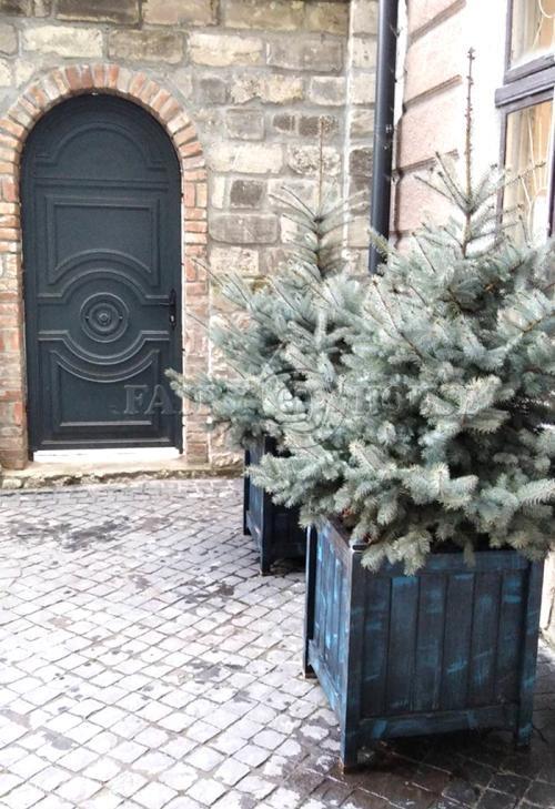 Дерев'яний  КВІТНИК для рослин та квітів Версаль Д63*Ш63*В70