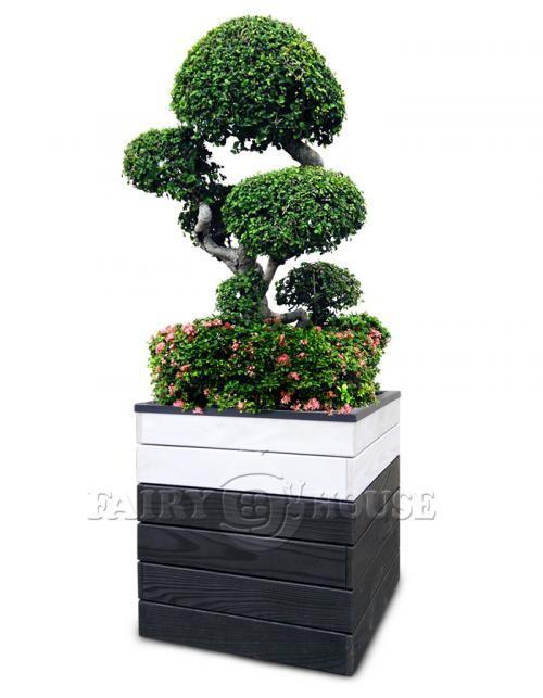 КОНТЕЙНЕР ДЛЯ РОСЛИН ТА КВІТІВ з дерева та металу Сонет Д50*Ш50*В53