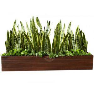 Дерев'яний ВАЗОН кашпо для рослин та квітів Марокко Д100*Ш20*В20 фото 4