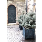 кашпо з дерева для рослин та квітів Версаль Д63*Ш63*В70 фото 13