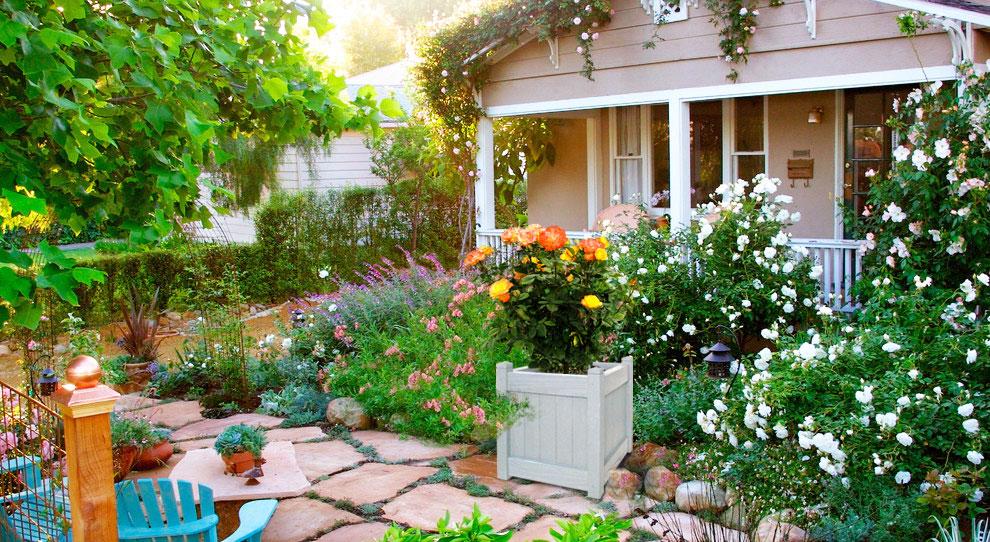 цветущий сад в контейнерах
